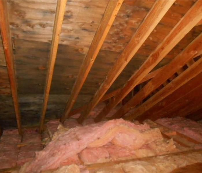 Attic Mold Remediation in Danbury, CT Before