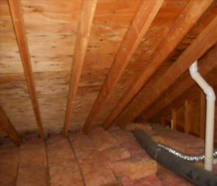 Attic Mold Remediation in Danbury, CT After