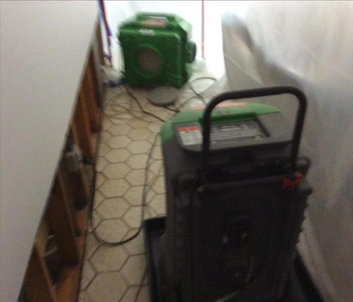 Mold Damage in Ridgefield CT