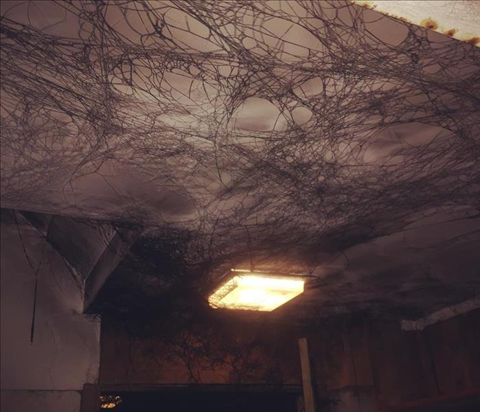 Soot Damage in Redding CT`