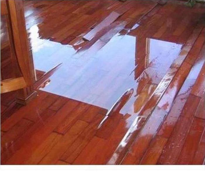 water pooling on dark hardwood floor that is warping