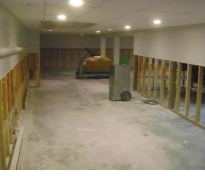 Mold Remediation Understanding the Difference Between Mold Removal and Mold Remediation