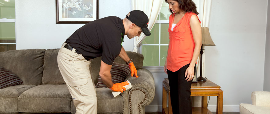 Danbury, CT carpet upholstery cleaning