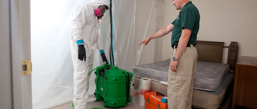 Danbury, CT mold removal process